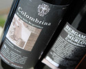 colombrina_merlot_igp_2